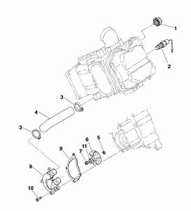 Best Of 1995 Polaris Sportsman 400 Wiring Diagram And