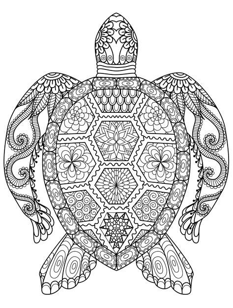 Mandalas Für Experten by Ausmalbilder Schwer Meeresschildkr 246 Te 01 Malen