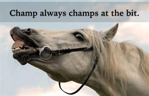 champ  chomp   bit grammar girl