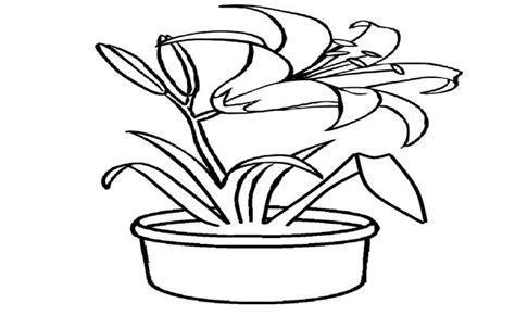 gambar mewarnai bunga dalam pot kumpulan gambar mewarnai