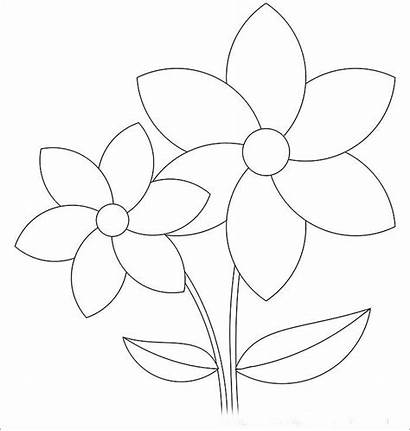 Flower Flowers Templates Template Printable Rose Pages