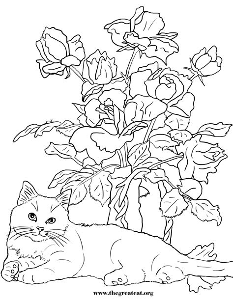 flower coloring books cats and flowers coloring book the great cat