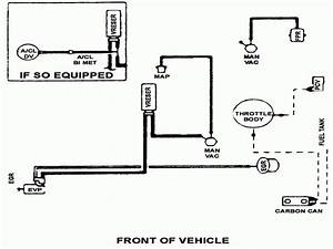 Solved  1988 Ford Ranger 2 3l  Vacuum Hose Routing