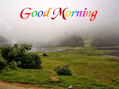 Morning Images Morning Images With Nature Morning Wishes