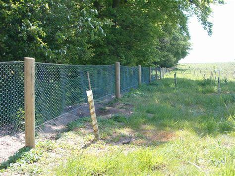 rabbit fencing equine fencing specialists suffolk all season fencing ltd