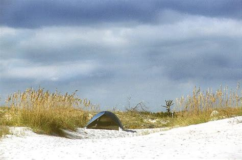 hammocks state park 10 carolina state parks that are an easy trip from