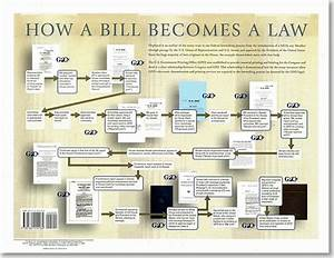 How A Bill Becomes A Law  Poster