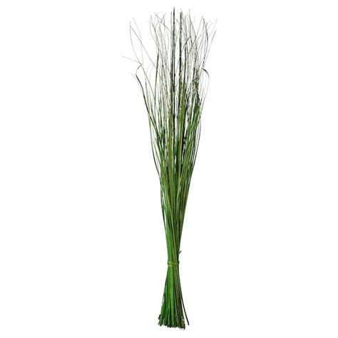 fiori ikea smycka bouquet essiccato verde ikea