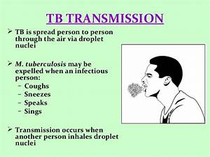 EPIDEMIOLOGY OF TUBERCULOSIS
