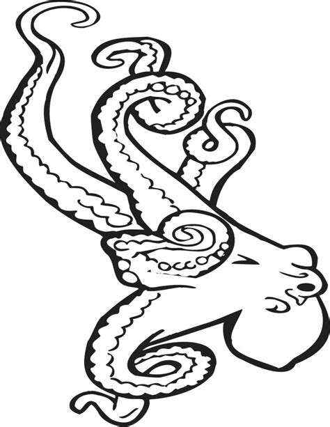 octopus coloring page free printable octopus coloring pages for