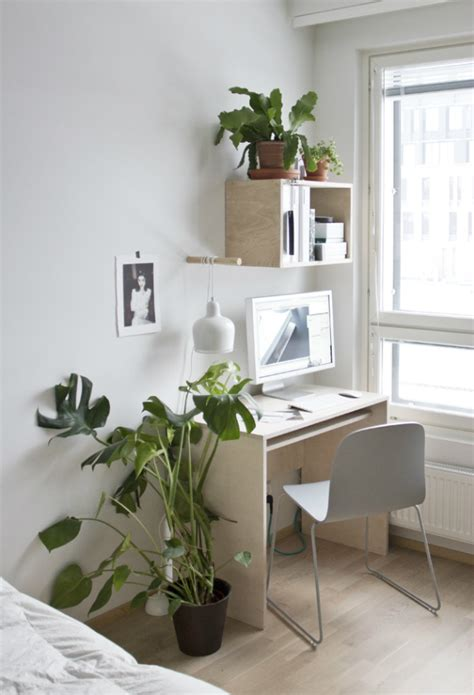 good reasons   plants   home office