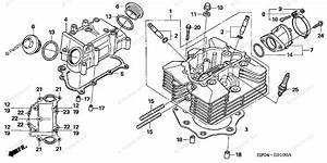 29 2005 Honda Foreman 500 Parts Diagram