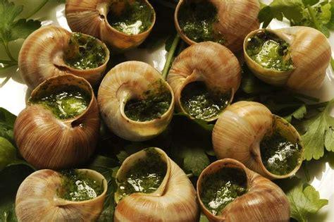 cuisine escargot food snails cuisine