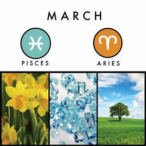 Birth Signs and Symbols | What to Expect