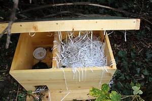 Haus Bauen Gut Und Günstig : igelauswilderung tipps und tricks wildtierhilfe wien ~ Michelbontemps.com Haus und Dekorationen