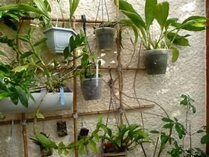 Support Plantes Grimpantes : support plante grimpante fer trouvez le meilleur prix ~ Dode.kayakingforconservation.com Idées de Décoration