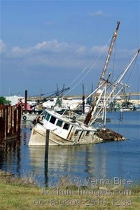 Boat Salvage Yards New Orleans by Acclaim Images Sunken Shrimp Boat Posters Sunken
