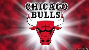 NBA Chicago Bulls Logo 2013 Background HD Wallpapers ...