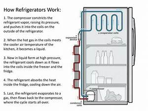 Ppt - How Refrigerators Work  Powerpoint Presentation
