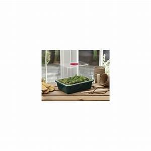 Serre D Intérieur : mini serre d 39 int rieur petit format plantes et jardins ~ Preciouscoupons.com Idées de Décoration