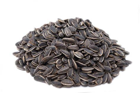 toasted onion garlic dry seasoned sunflower seeds mygerbs