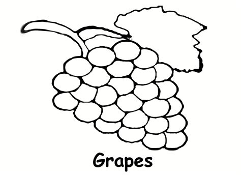 Coloring Grapes by Grapes Coloring Pages To And Print For Free