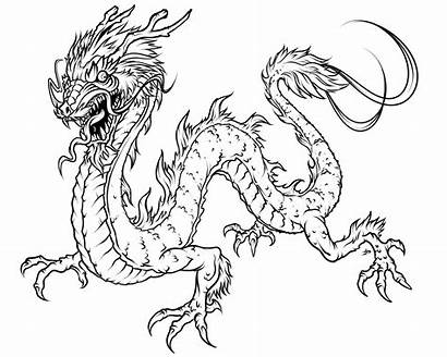 Coloring Pages Dragon Realistic Promise Below Before