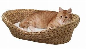 Panier Pour Chat Original : corbeille pour chat en jacinthe d 39 eau avec coussin blanc couchage chat ~ Teatrodelosmanantiales.com Idées de Décoration