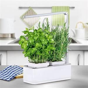 Carré Potager Gamm Vert : potager d 39 int rieur 1 5l nessia kitchen gardening 41x24x31 ~ Dailycaller-alerts.com Idées de Décoration