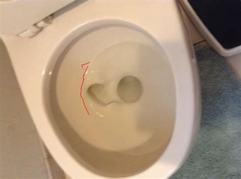 Toilet Bowl No Longer Fills Up High Enough? Doityourself