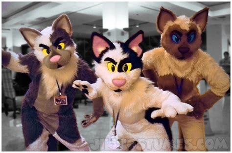 Catz  How Do You Make Those Animal Costumes? (fursuits