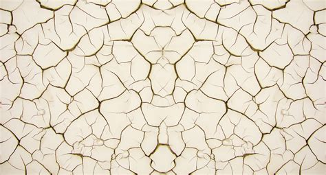 interior paint designs texture all design creative