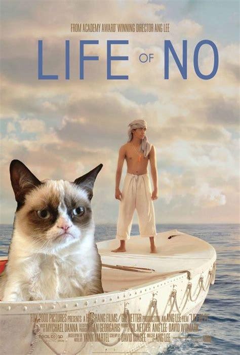 Pet Insurance Meme - 111 best images about gruppy cat on pinterest