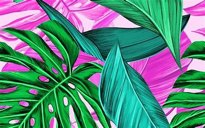 Pattern Leaves Bright Tropical Background 4k Ultra