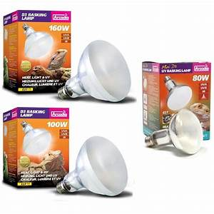 arcadia d3 reptile basking lamp 80w 100w 160w heat light With tortoise heat lamp and uv light