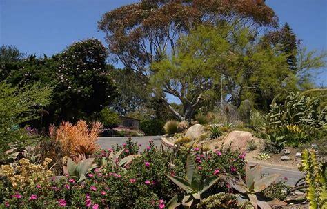 botanical gardens encinitas san diego botanic garden day trip a paradise in encinitas