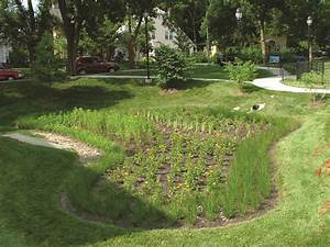 May 29 Bioswale Design Maintenance With Native Plants