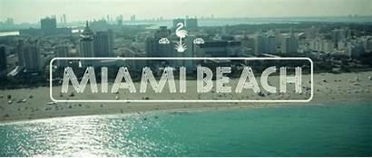 Miami Beach Whiskey Sunshine Giphy Gifs Animated