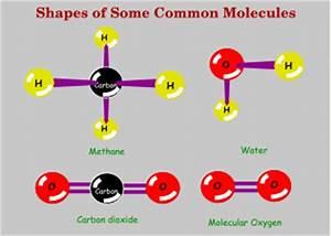 Carbon Dioxide Shape