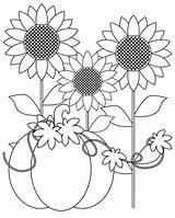 Coloring Harvest Pumpkin Sunflower Fall Printable sketch template