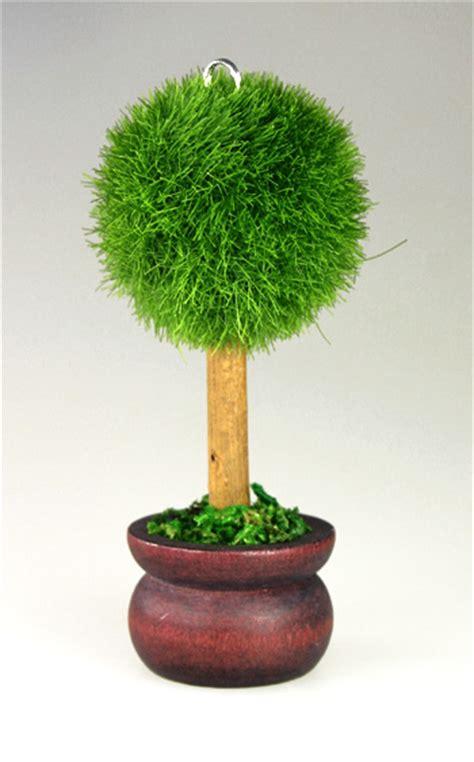 petit arbre en pot le marque place petit arbre rond pot de terre noel