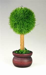Pot Pour Arbre : le marque place petit arbre rond pot de terre noel ~ Dallasstarsshop.com Idées de Décoration