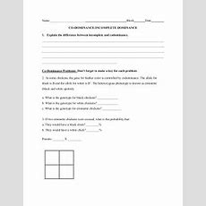 Sbi 3c Incomplete And Codominance Worksheet Explain The