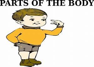 Parts Of The Body Clip Art at Clker.com - vector clip art ...