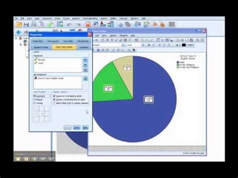 pie chart  spss  youtube