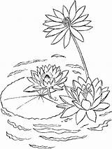 Lily Coloring Water Pages Printable Lake Lilies Plants Flower Flowers Drawing Drawings Print Lilly Pad Sheets Colors Recommended Desenho Lotus sketch template
