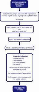 4 3 Behaviour Management