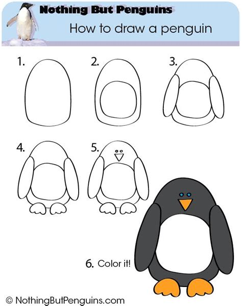 Here, we look at how to draw a penguin for kids and provide you some information that you can share with. Noordpool & Zuidpool | Kleuteridee