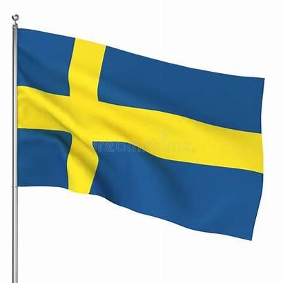 Bandiera Flag Danish Vlag Svenska Flaggan Zweedse