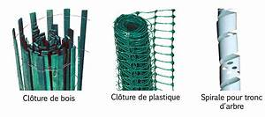 Filet Pour Arbre Fruitier : comment planter des arbustes fontaine developpement ~ Melissatoandfro.com Idées de Décoration